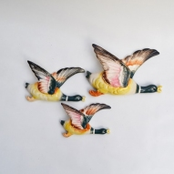 Flying-wall-ducks,