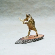 Taxidermy-Cane-Toad