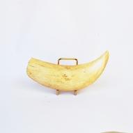 Sperm-Whale-tooth, Sperm-whale-teeth, Sperm-whale, Australian-whaling-industry