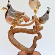 bird-taxidermy, Partridge, Quail, Bird-Taxidermy,