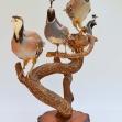 Partridge, Quail, Bird-Taxidermy,