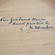 Maori-chief, Maoriland, New-Zealandana, Presentation-Box,