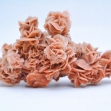 Desert-Rose, Gypsum-Crystals,