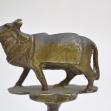 Brahman-Bull,