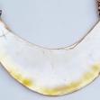 PNG-kina-shell, Gold-lip-pearl-shell
